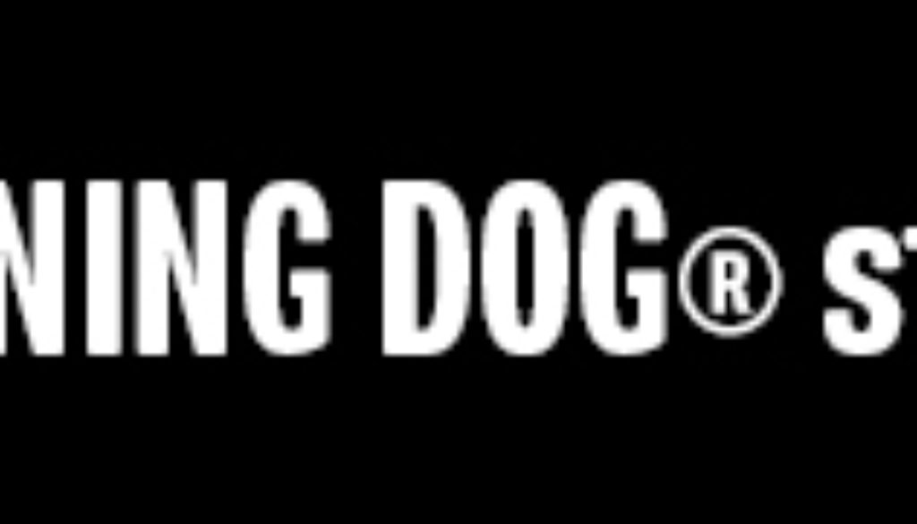GrinningDogStudio-Banner